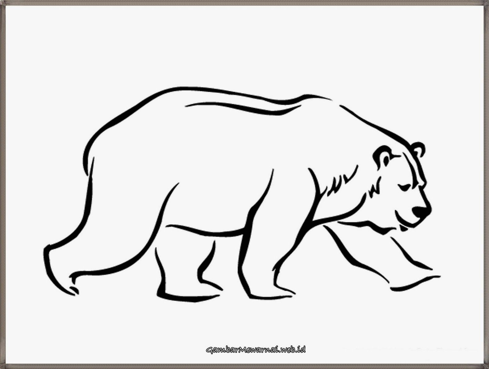 Gambar Mewarnai Beruang Warna Gambar