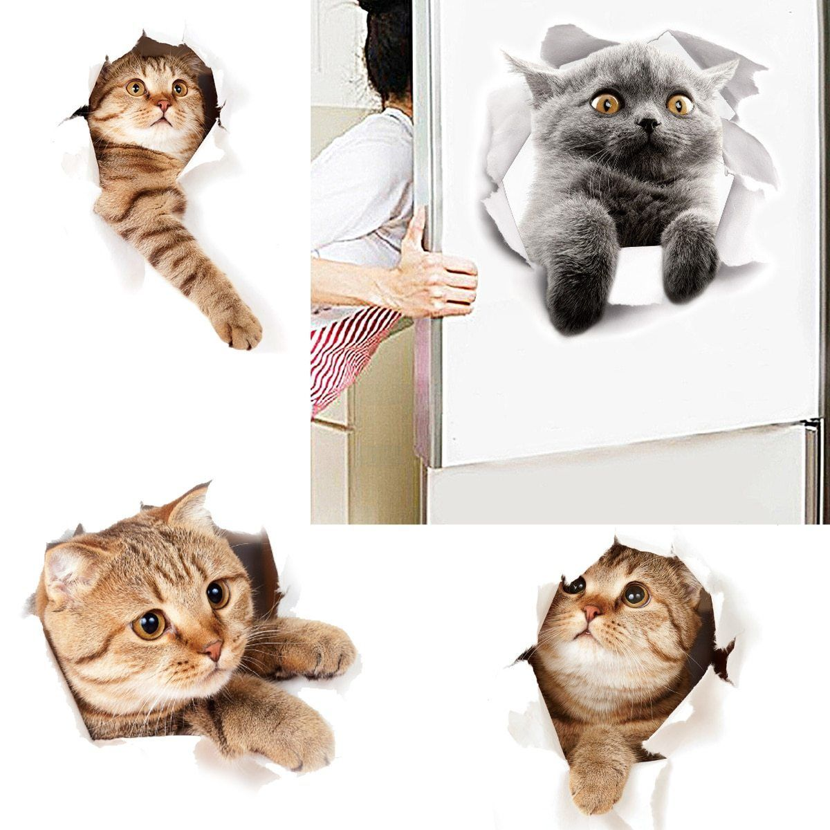 Cute Animals Coming Out Wall Stickers In 2020 Cute Cats Cute Animals Pvc Wall