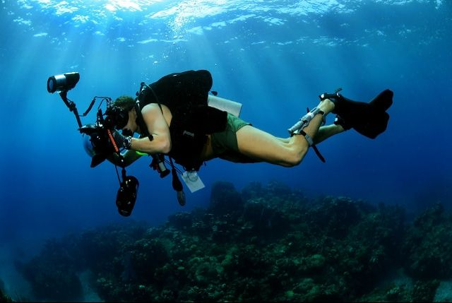 Top 10 Best Dive Camera Reviews in 2016   ♡ Scuba Diving: Gear ...