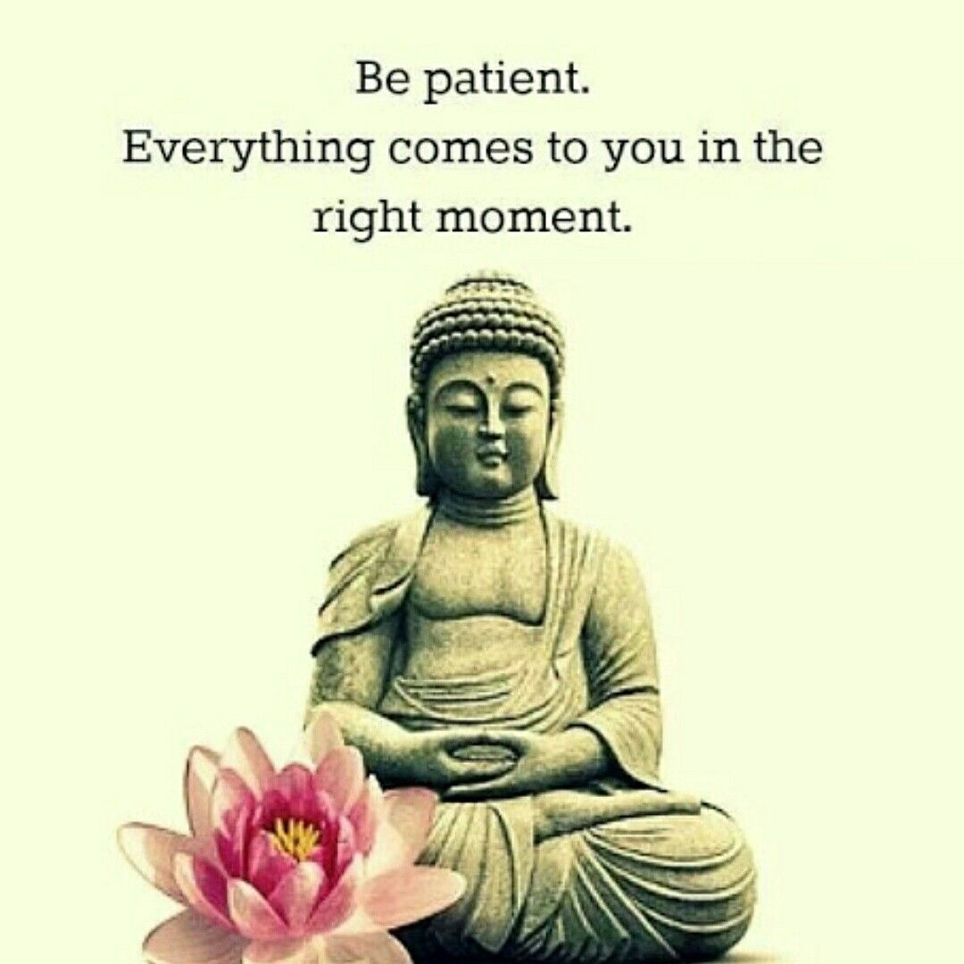 Buddha Love Quotes Adorable Buddha #love #quotes  My Mind  Pinterest  Buddha Design Decoration