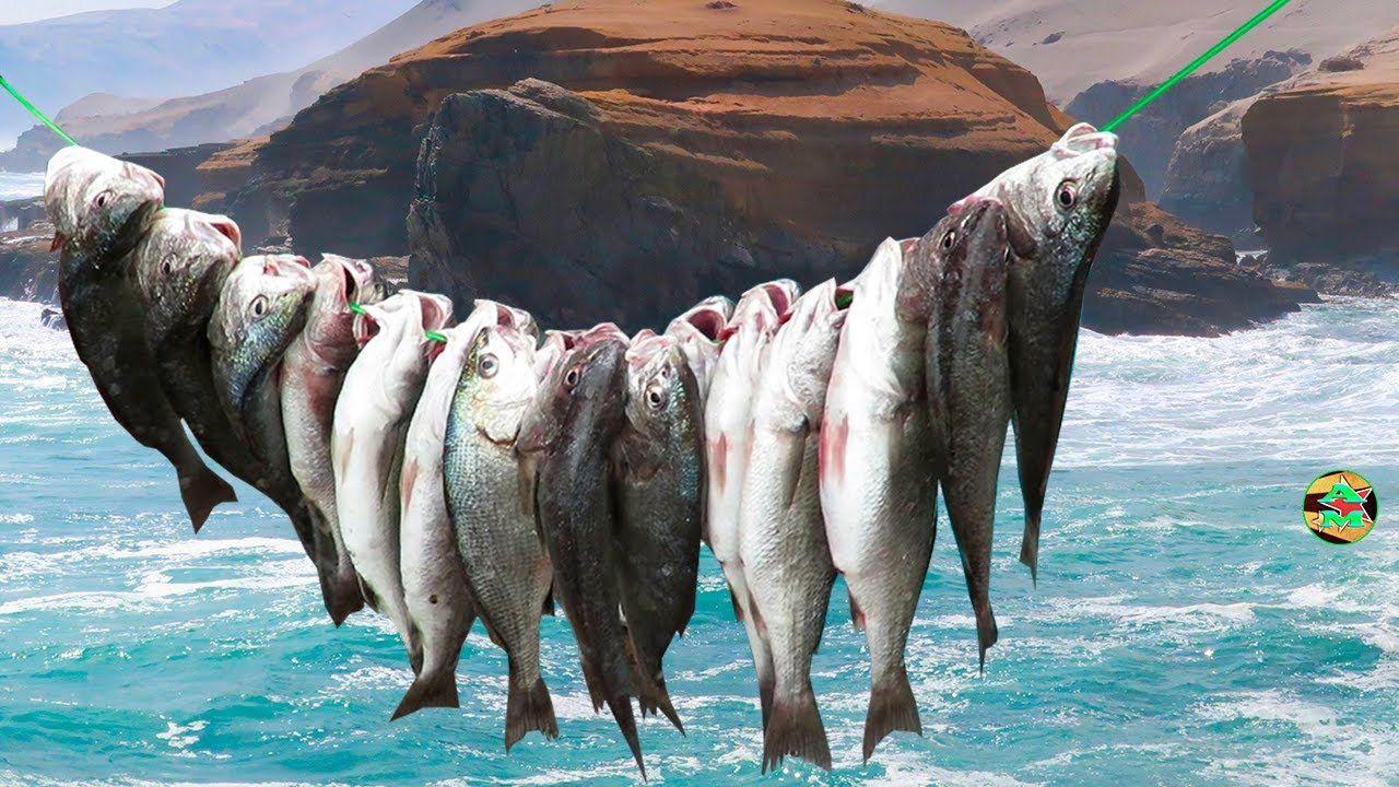 Pesca en los rios del peru