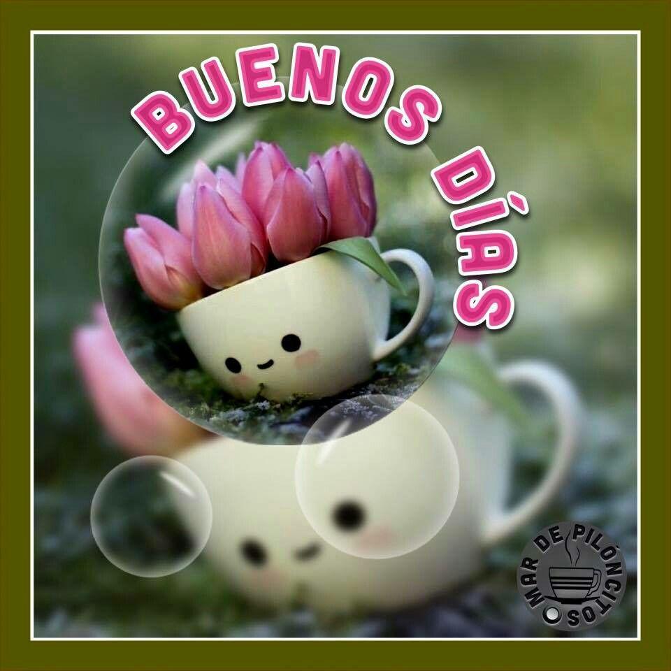 Pin von Renate auf Spanisch guten Morgen Abend  Guten morgen