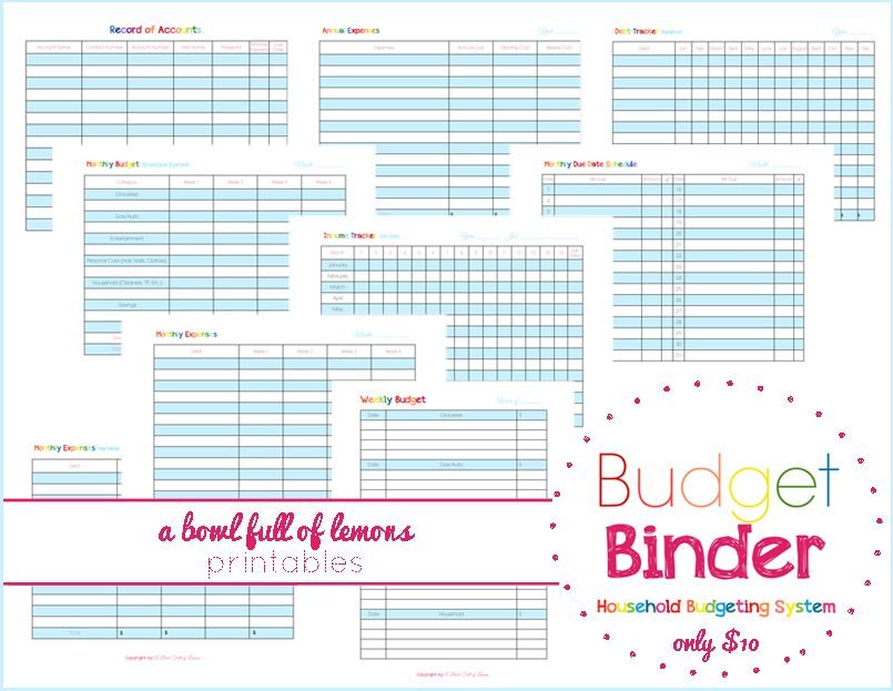 ABFOL Budget Binder System System Includes Cover Page Assembling
