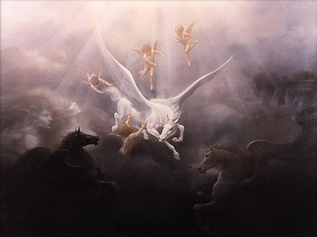 Cool Wallpaper Horse Angel - 6c6c6d2a1f65c5dc89f0b380cfd15f7f  Gallery_734377.jpg