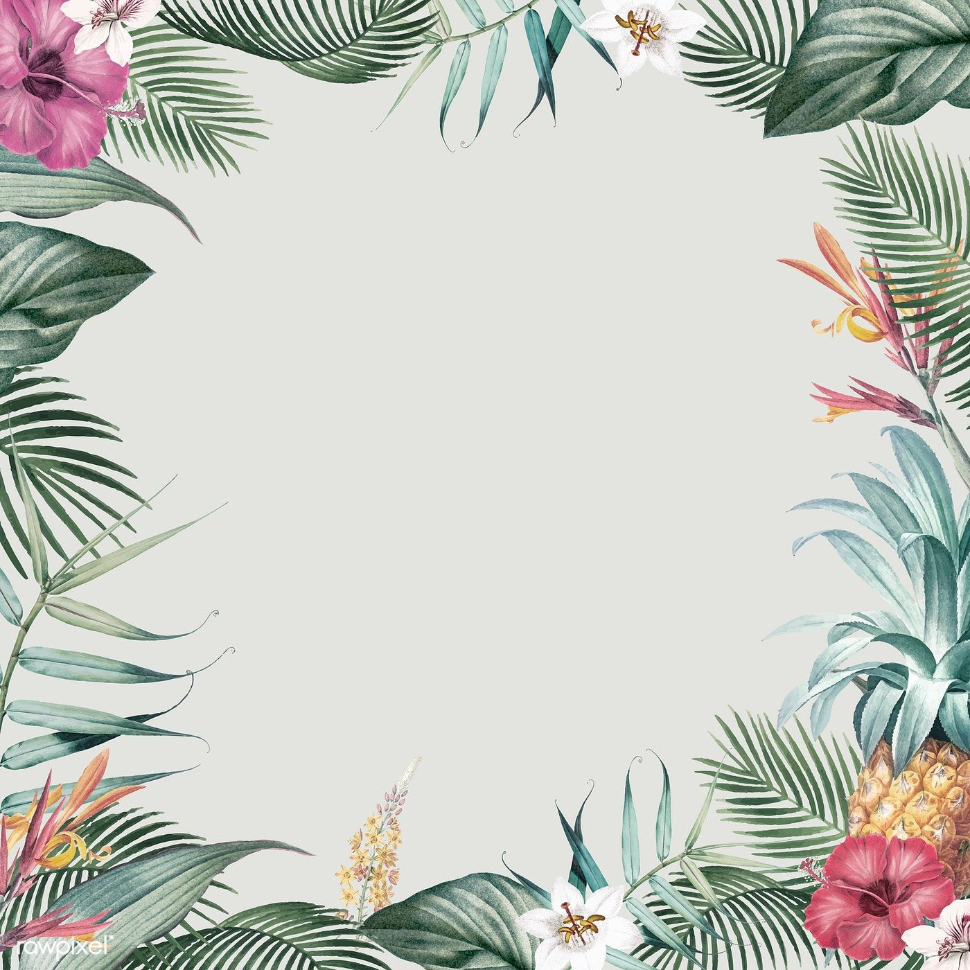 Download premium vector of Frame with tropical vintage ...