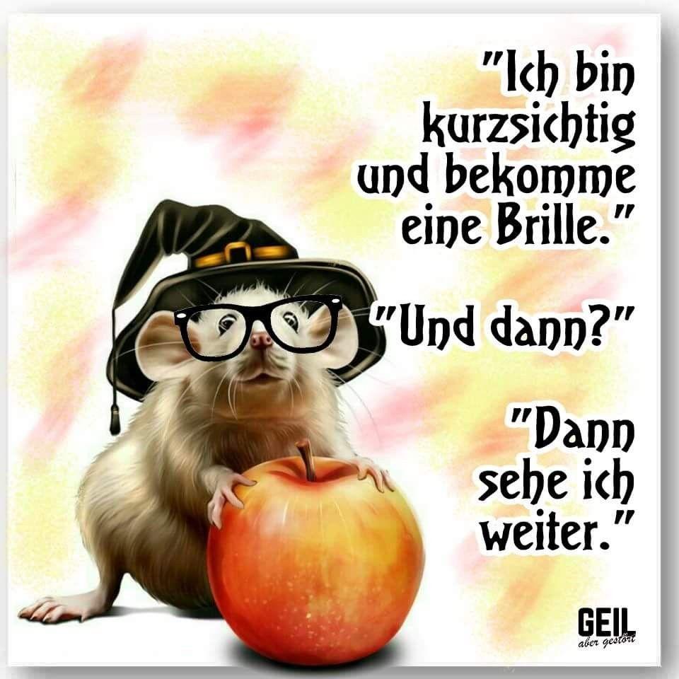 Pin Von Esther Sell Auf Guten Morgen Pinterest Lustig Witzig