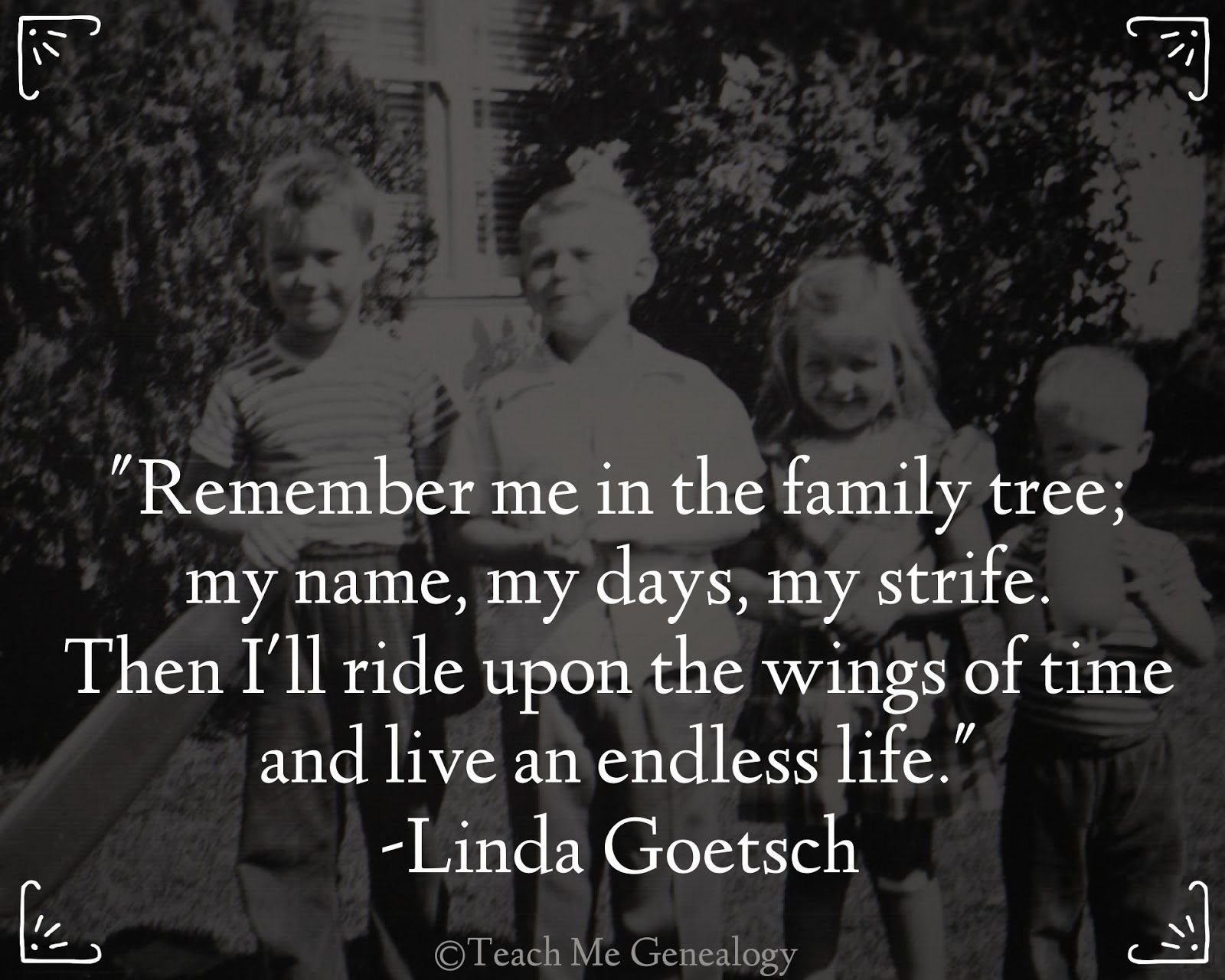 25 Best Cruise Quotes On Pinterest: Best 25+ Family Tree Quotes Ideas On Pinterest