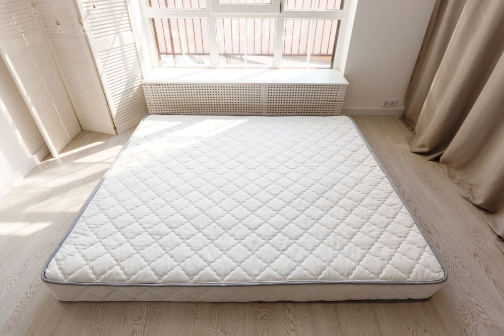 The One Reddit Thread All Renters And Frequent Travelers Should Bookmark Old Mattress Mattress Bed Bugs