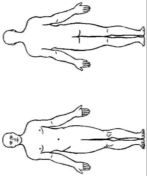 35 Körperumriss Mensch Vorlage   Besten Bilder von ...