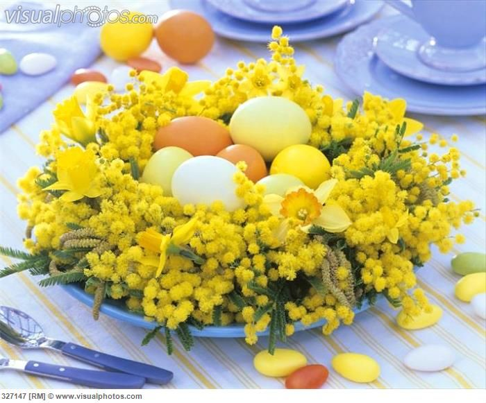 easter_arrangement_with mimosa