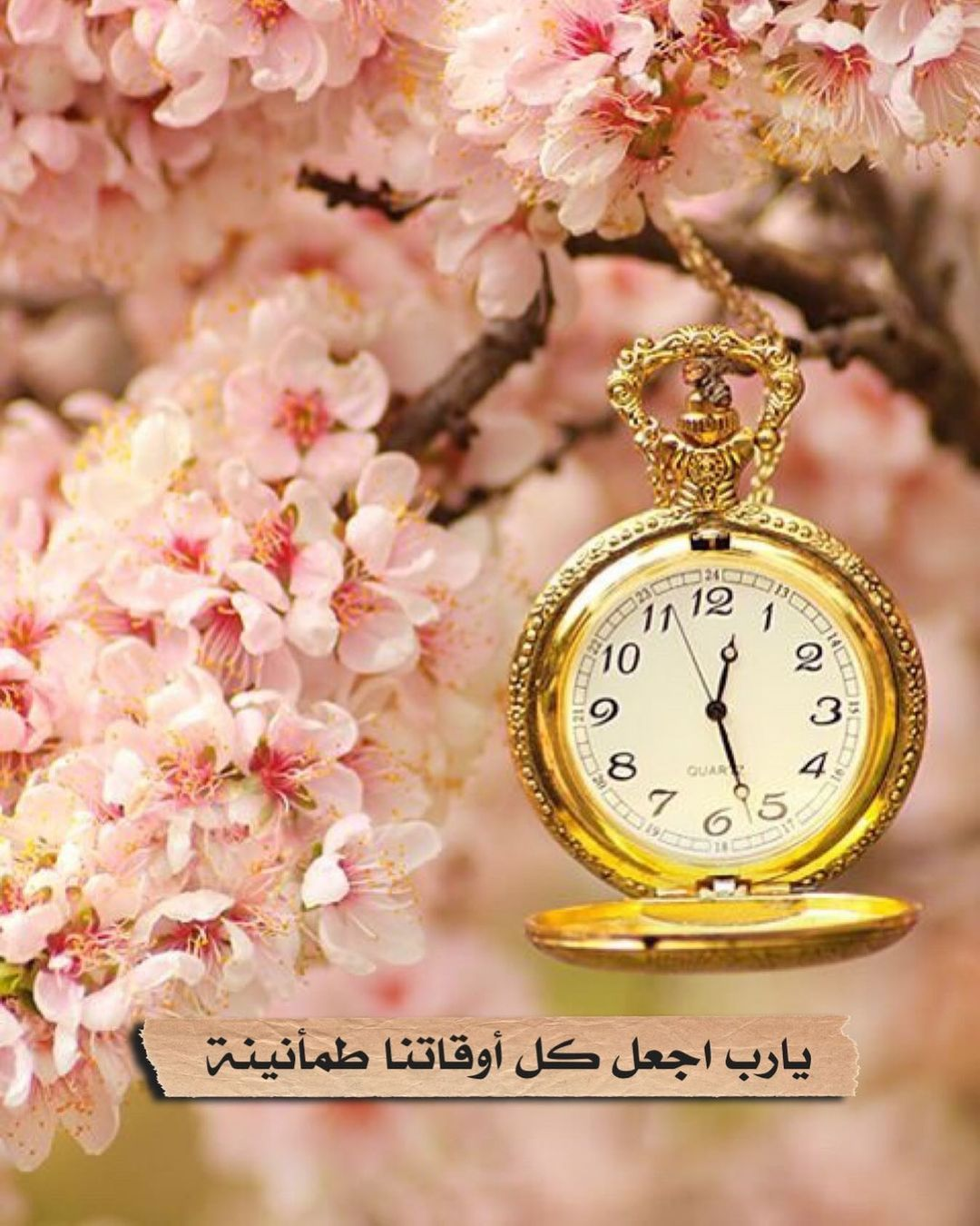 Aljanah On Instagram أذكار إسلامية ديني دين اسلام اسلامي هاشتاق اذكار صور رمزيات خلفيات تذكير دنيا الا In 2021 Accessories 10 Things Pocket Watch