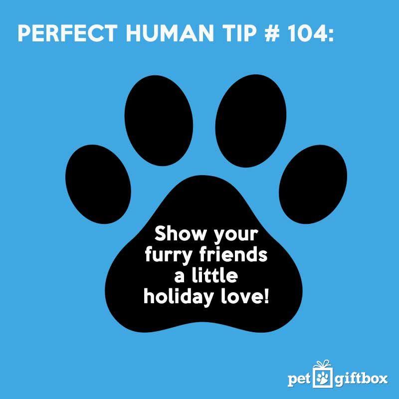 #Perfectpet #pets #doglove #catlove #puppylove #petsayings