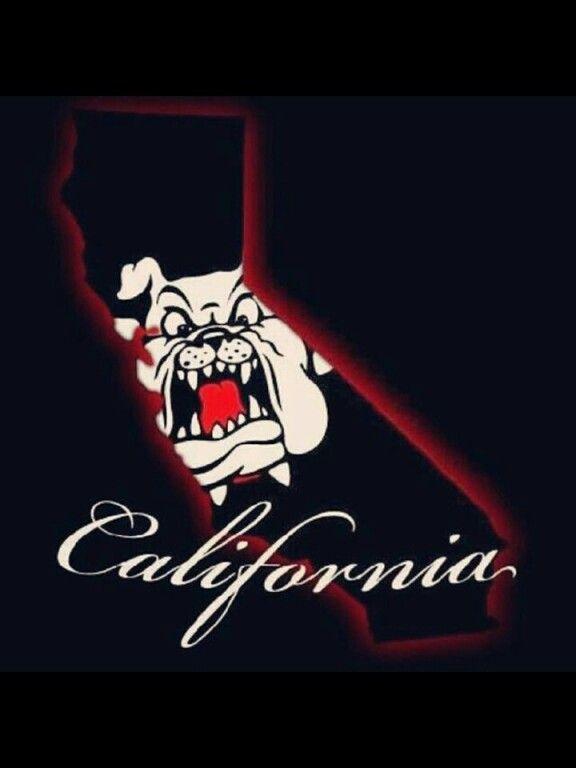Pin By Moni On Raiders 4 Life Fresno Bulldogs Bulldog Wallpaper Fresno