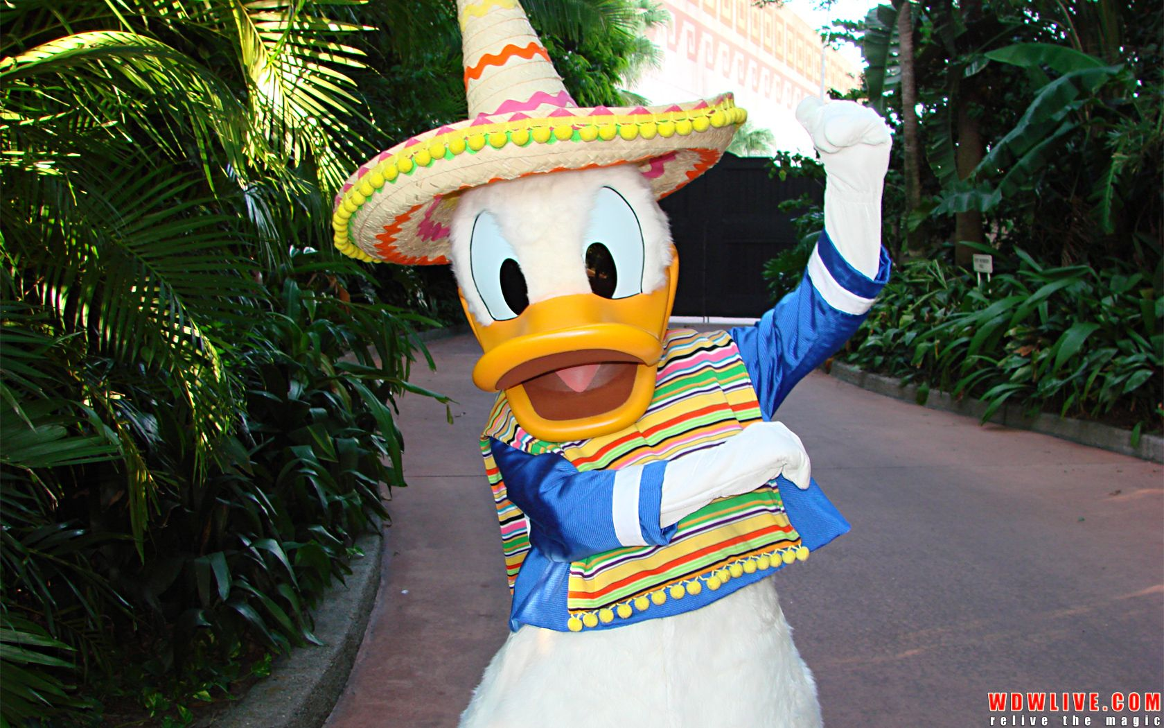 Disney EPCOT Park Cinco De Mayo May 5th 2019 Pin Mexico pavilion Donald Duck