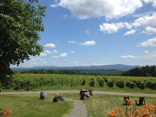 V lo vino dans les cantons de l 39 est domaine les bromes lac brome la route des vins - Office du tourisme des cantons de l est ...