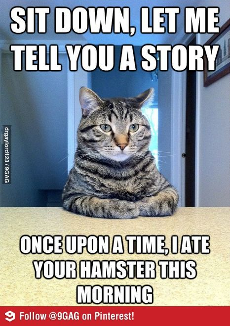 Posting Something Boring While You're Half Asleep and Then ... |Half Asleep Funny Memes