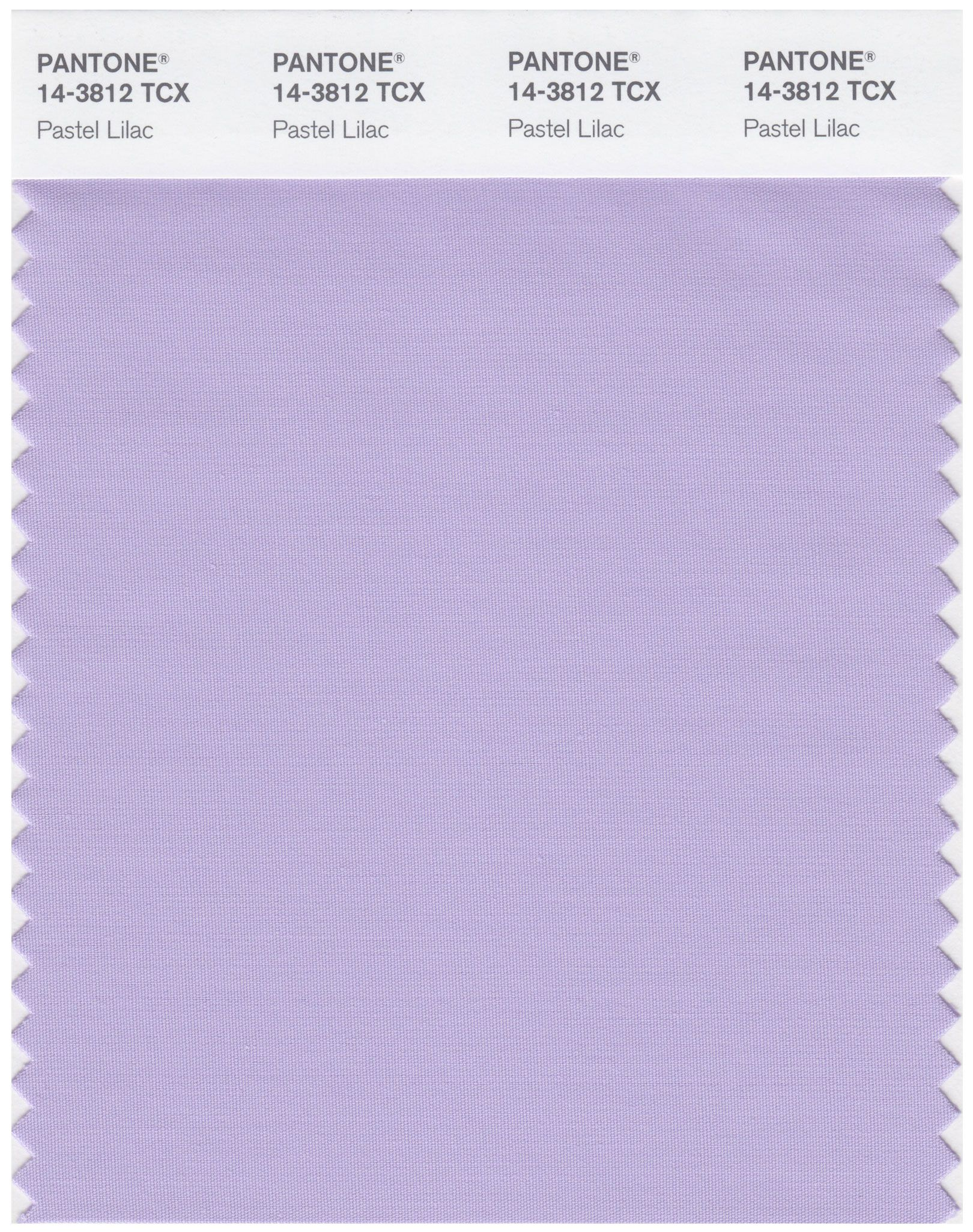 pastel lilac color swatch using pantone colors in photoshop of the year 2019 rgb