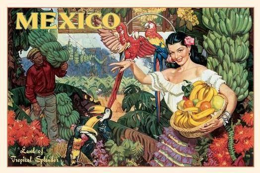 mexican art | ... Splendor - Vintage Mexico Tourism Posters, Art, and Prints - Enjoy Art