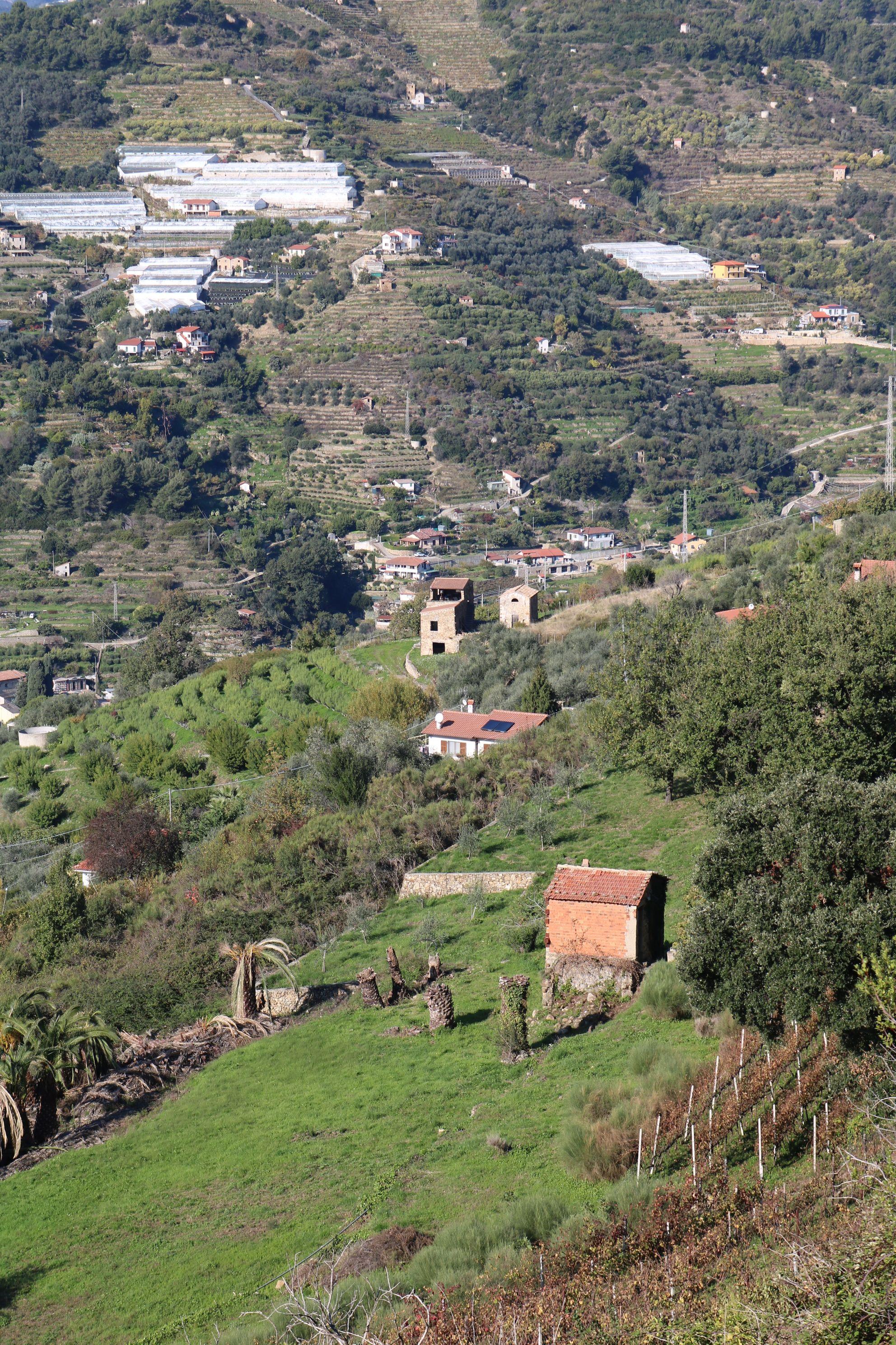 San Biagio della Cima (IM) Località San Sinforiano nel