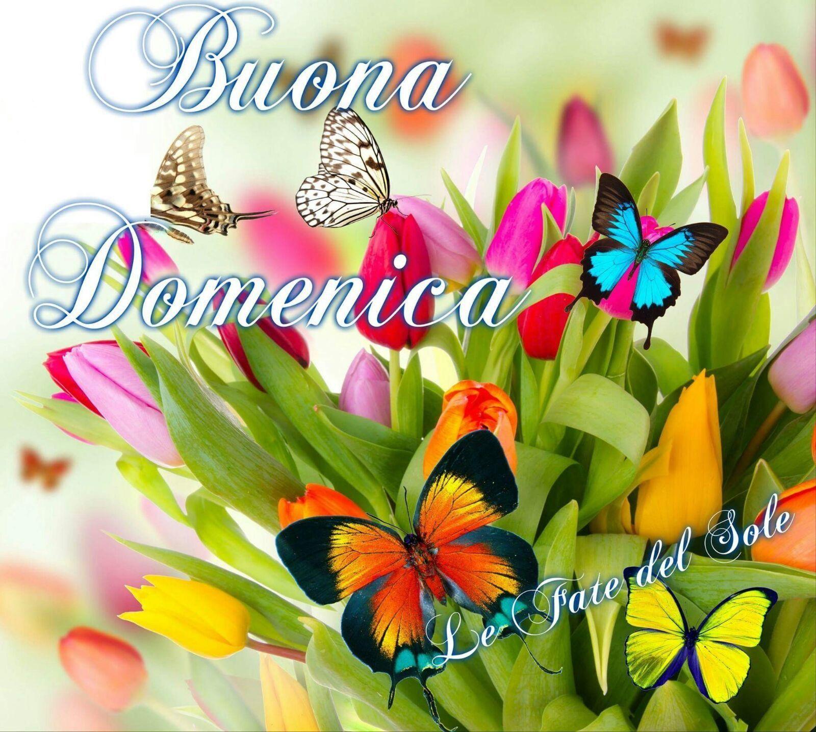 Buongiorno Buon Giorno Italia Buongiorno Buona Domenica