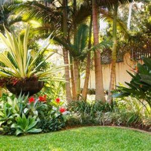 10 consejos para dise o de jardines panama grama fina for Decoracion de jardines en panama