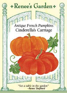 These are fantastic pumpkins. We're planting them again this year.