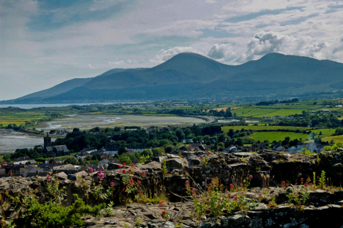 Mournes Co Down Ireland Images Of Ireland Irish Landscape Landscape