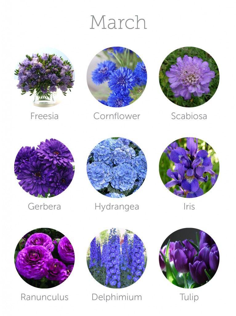 Wedding Budget Tip 16 Choose In Season Flowers