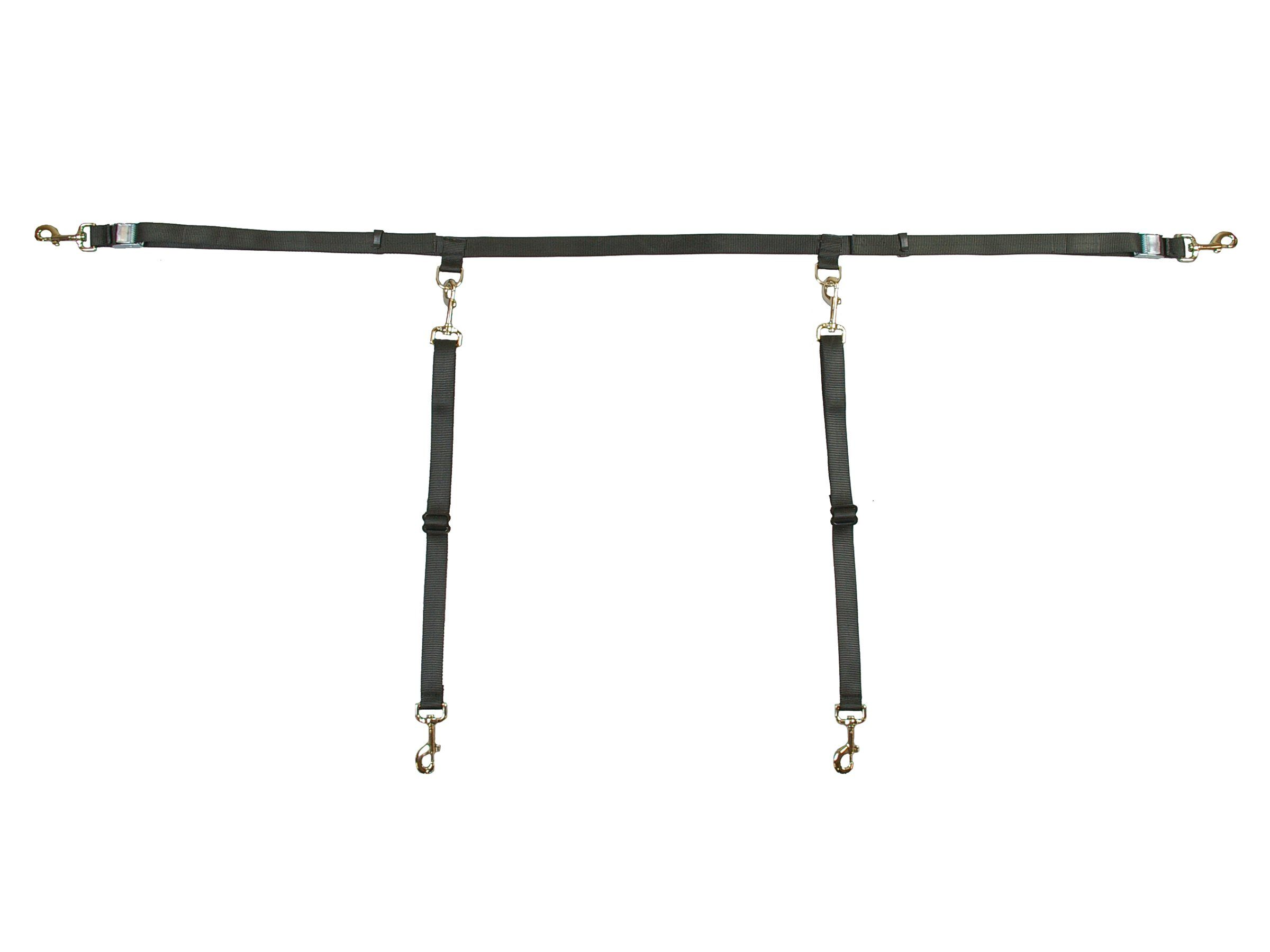 Bushwhacker paws n claws two dog truck bed cross tether