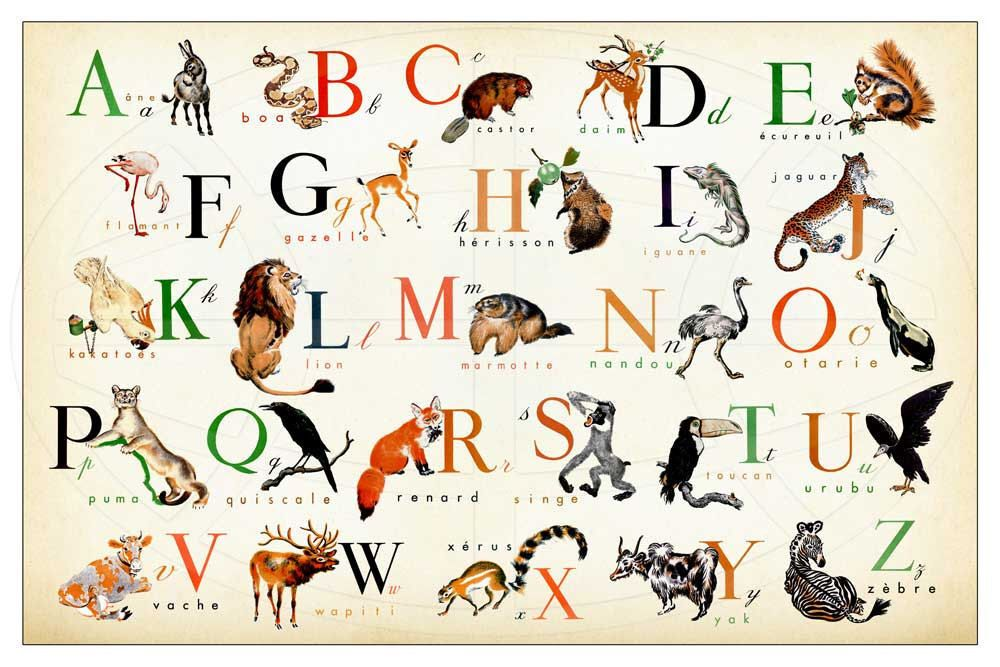 French Alphabet Horizontal Wonderful Animal Alphabet Print 17 X 11 By Childstouch On Etsy Https Www Etsy C Alphabet Print French Alphabet Animal Alphabet