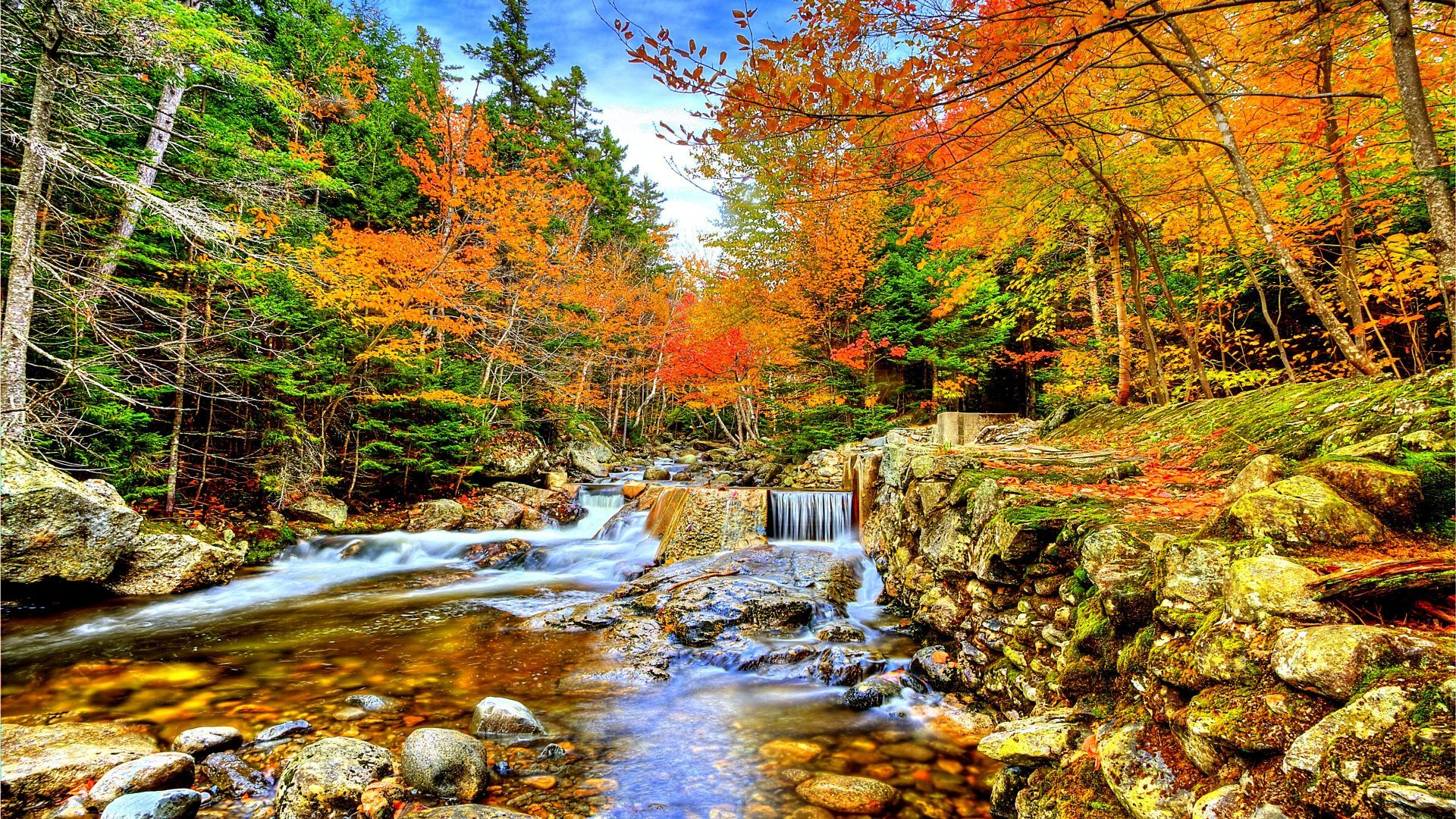 Wpnature Autumn Forest Waterfalls Enchanting Nature