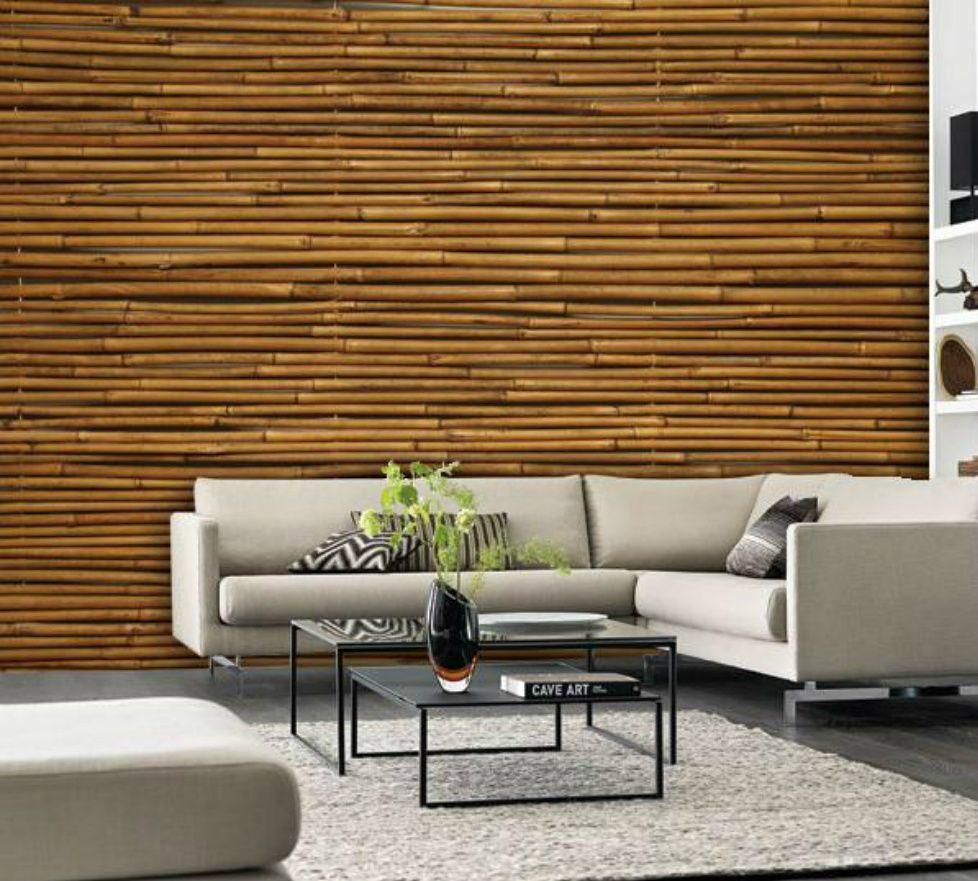 Modern Horizontal Bamboo Wall