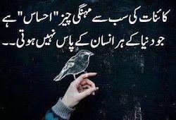 Urdu quote DP for WhatsApp n Facebook