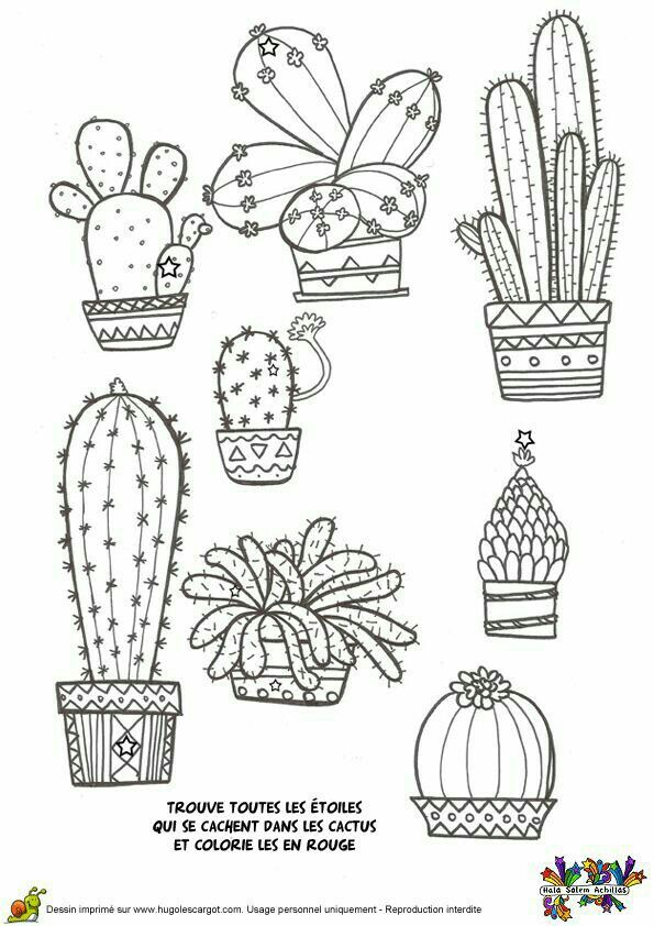 Кактус … | Doodles | Pinterest | Cactus doodle, Cactus drawing and ...