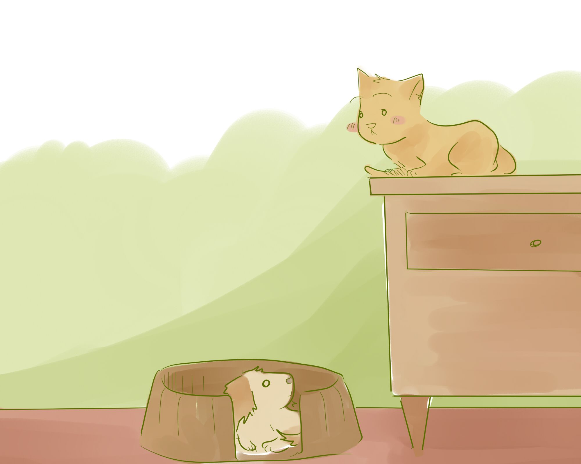 Introduce a New Puppy to the Resident Cat #newpuppy