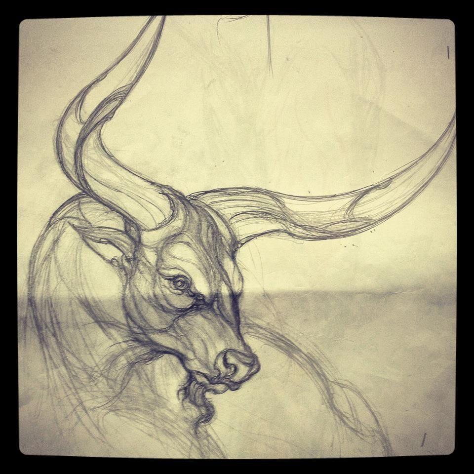 bull tattoo | byk | Pinterest | Toros, Tauro y Tatuajes