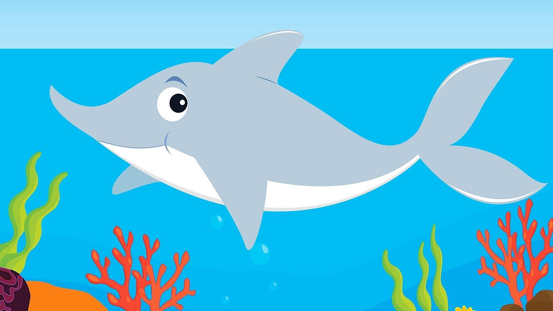 Baby Shark Kids Songs Sharks For Kids Shark Facts For Kids Kids Songs