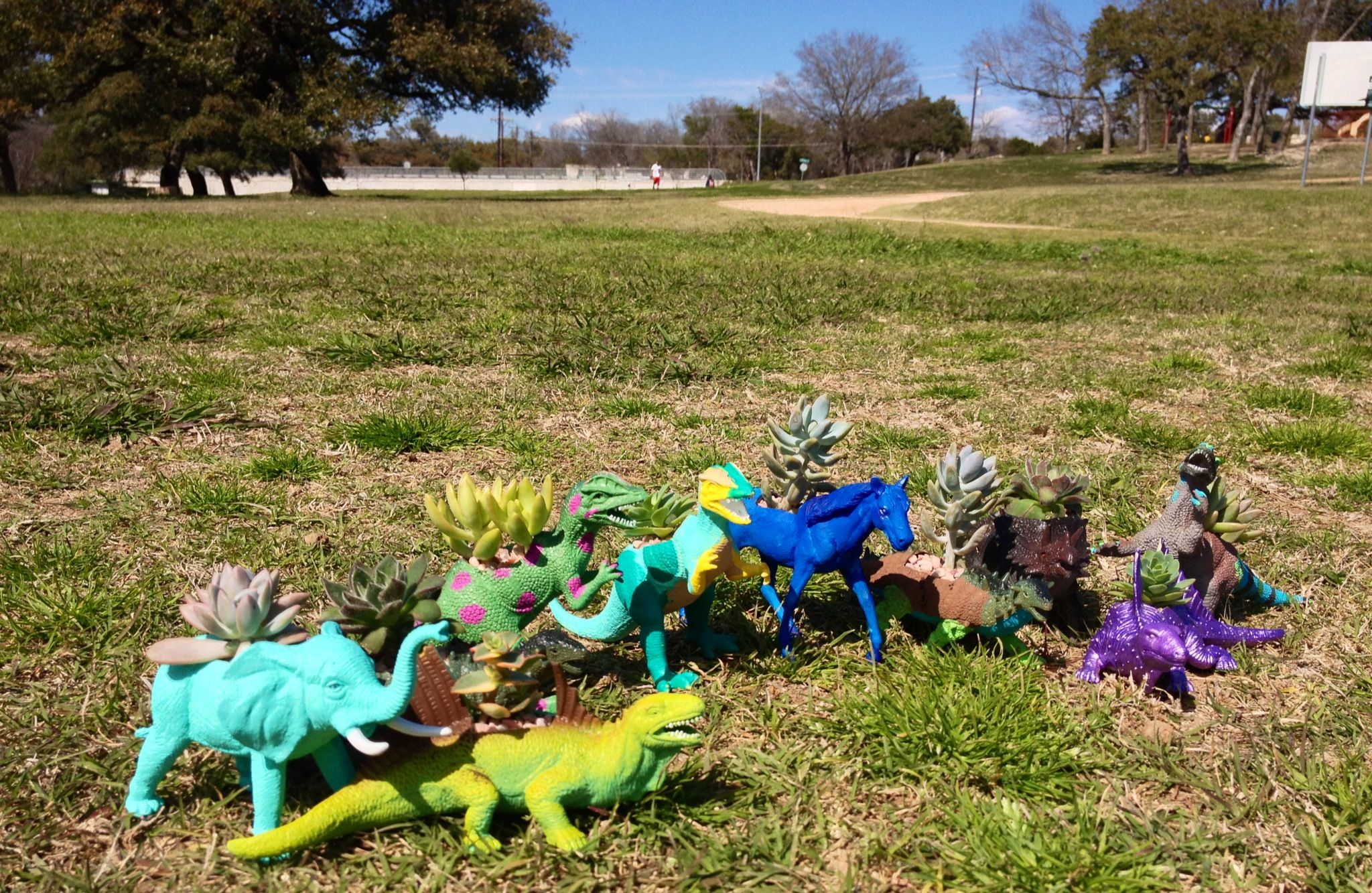 Potting Succulents In Painted Toy Dinosaurs