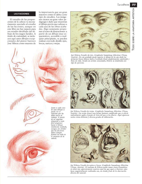 Contemporáneo Cuál Es La Anatomía Del Estudio De Composición ...