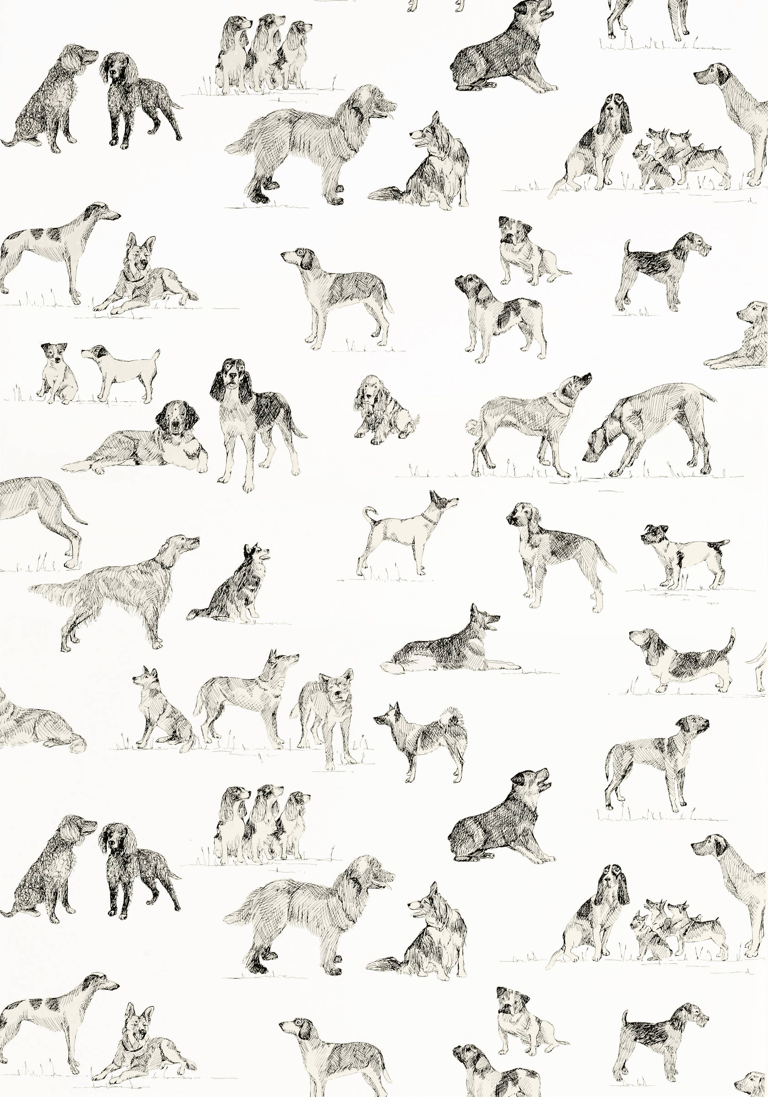 Best Friend Black And White T1038 Collection Menswear Resource From Thibaut Friends Wallpaper Black Background Wallpaper Best Friend Wallpaper