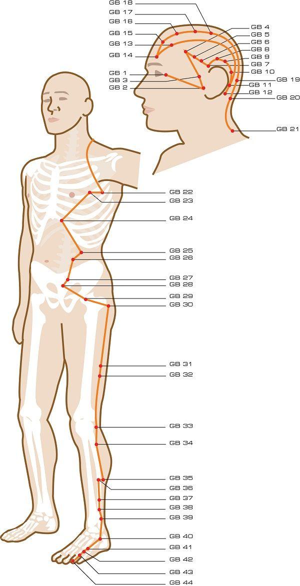 Gallbladder Acupuncture Points | Kinesiology | Meridian