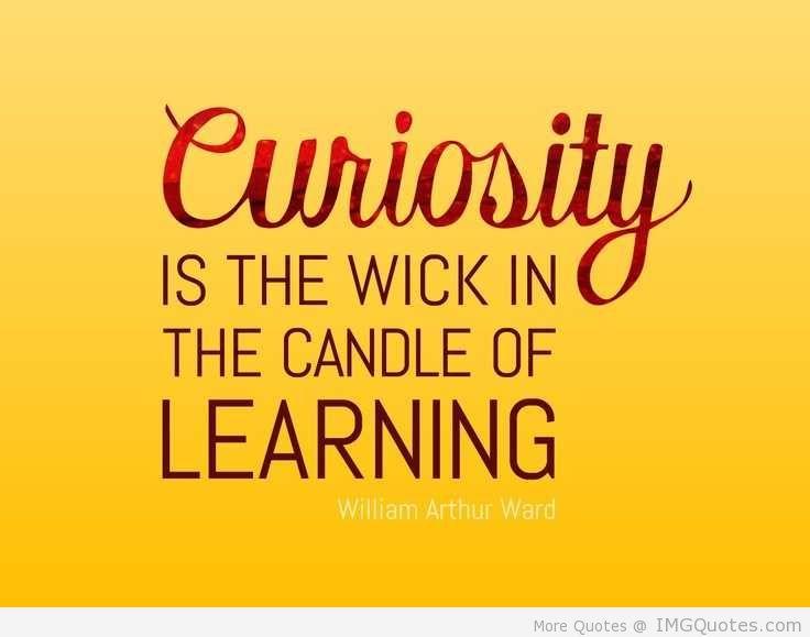 Curiosity Quotes 14 Curiosity Quotes 14 Curiosity Quotes Imagination Quotes Quotes
