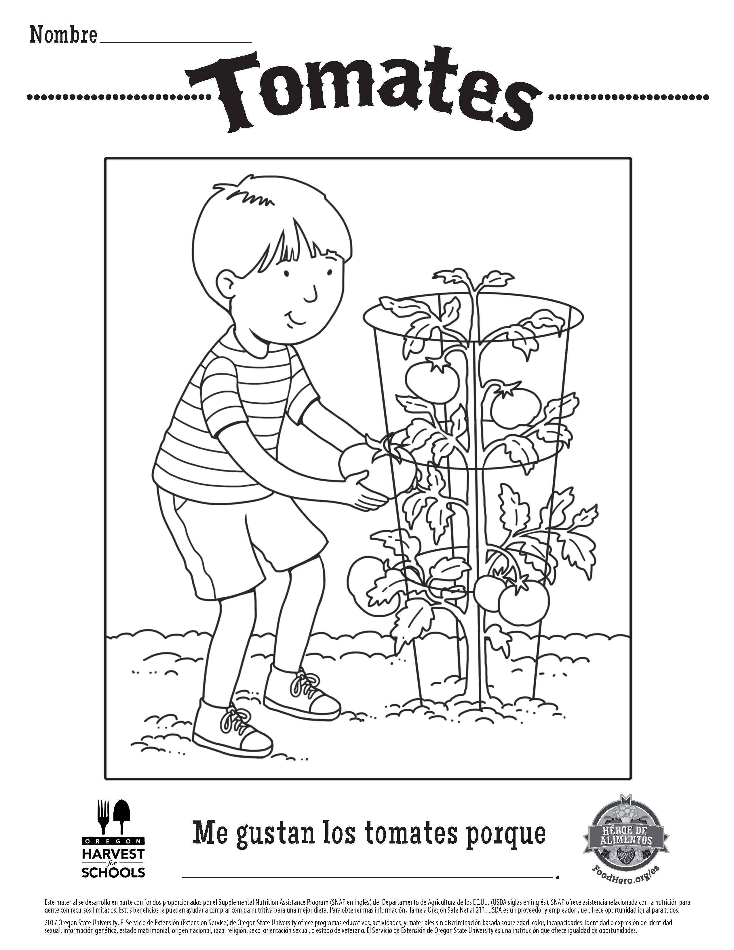 Tomatoes in Spanish Free Printable Children\'s Coloring Sheet Food ...