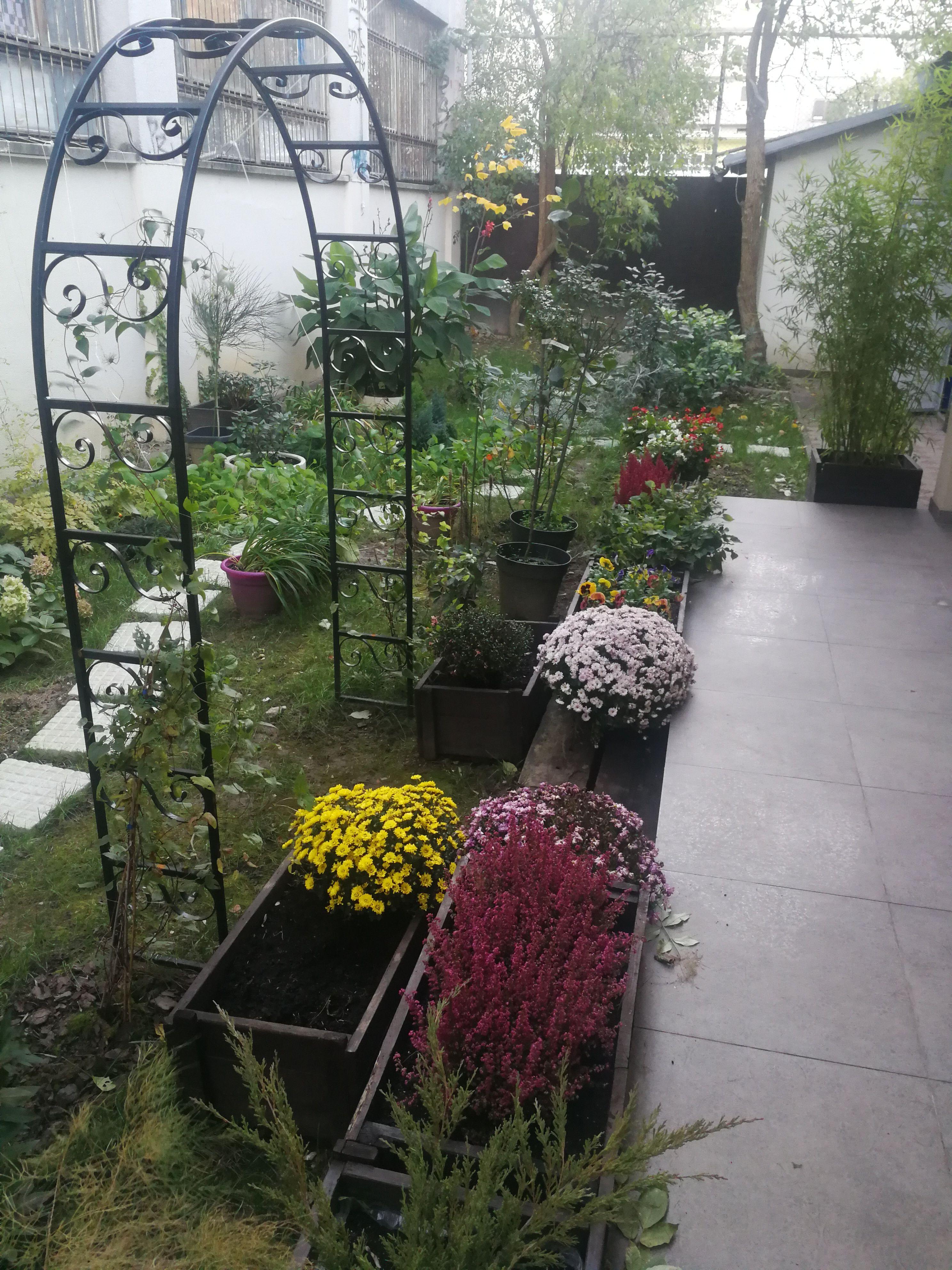 Our Beautiful Garden In Fall Casablanca Croatia Zagreb Interior Exterior Rooms Bedandbreakfast Casabla Beautiful Gardens Interior And Exterior Exterior