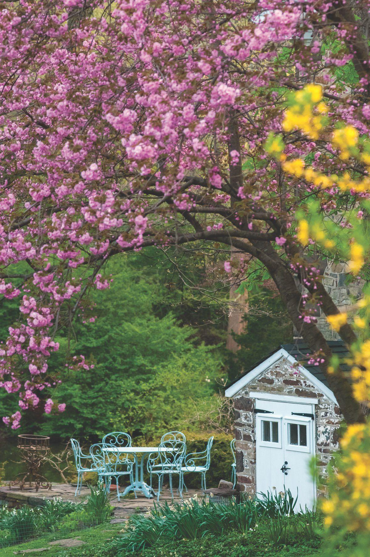 A Dozen Dreamy Outdoor Living Spaces Private Garden Country Gardening Landscape Design