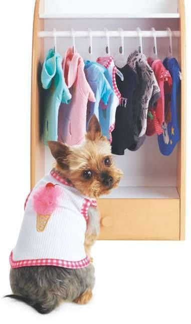 Dog Clothing Now Available At Asda Dog Clothes Pet Clothes