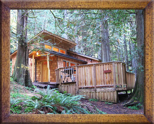 Cedar Grove Cabin In 2020 Rainier National Park National Parks Cabin