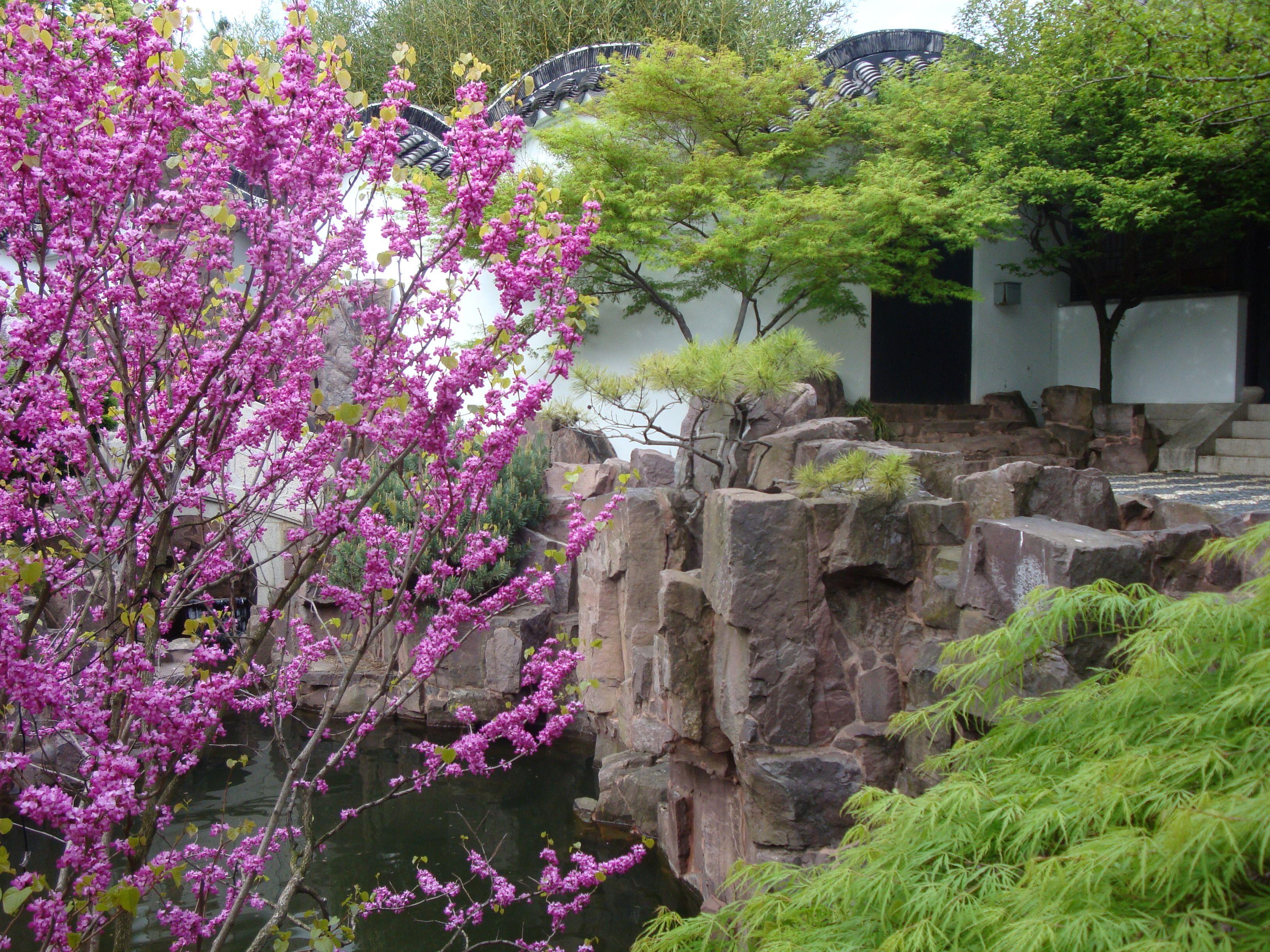 Snug Harbor Botanical Garden, Staten Island, NY