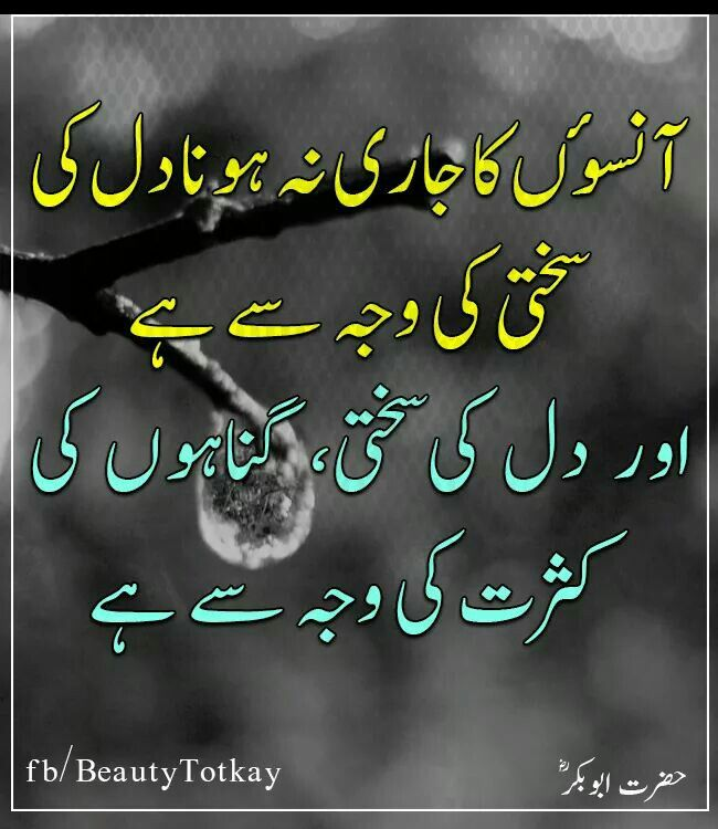 Pin by Soomal mari on urdu New quotes, Deep words