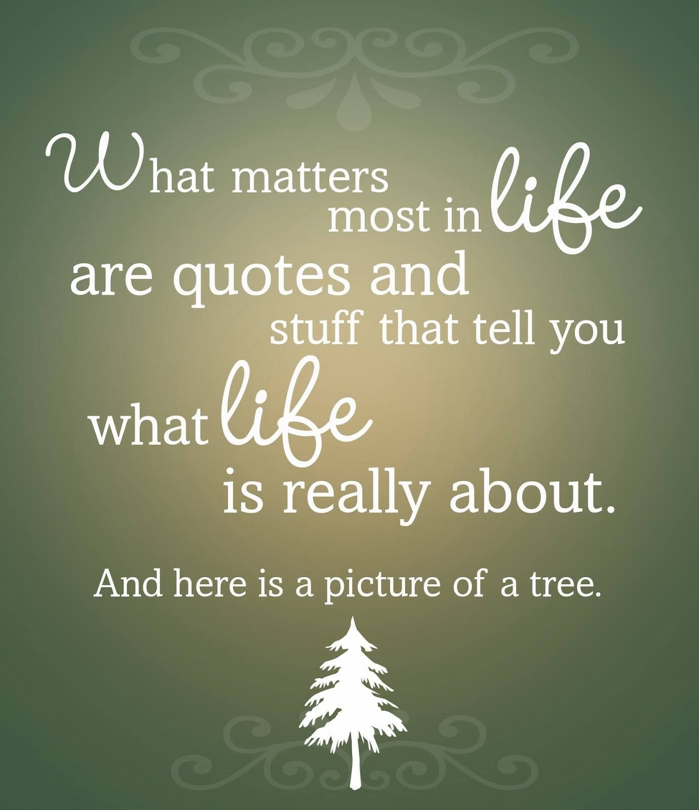 What Really Matters In Life Quotes What Matters Most In Life Are Quotes And Stuff That Tell You What